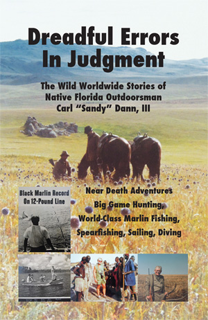 Sandy Dann book cover